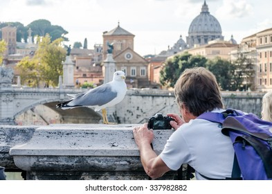 Tourist photographer takes pictures on the bridge over the River Tiber in Rome near the Vatican dome seagull pictured
