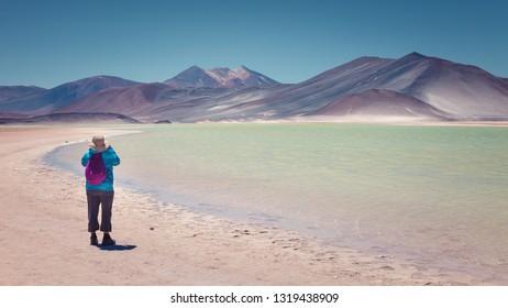Tourist photographing the Caichinque and Cerro Medano volcano from Salar de Talar, near Aguas Calientes, in the Antofagasta region, San Pedro de Atacama, , northern Chile