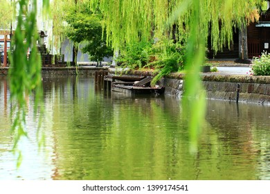 A tourist place in Japan - Weeping willow tree and the river