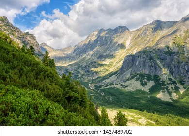 Tourist route in summer High Tatra mountains, scenic landscape with rocks, green trees and blue cloudy sky, outdoor travel background, Strbske Pleso region, Slovakia (Slovensko)