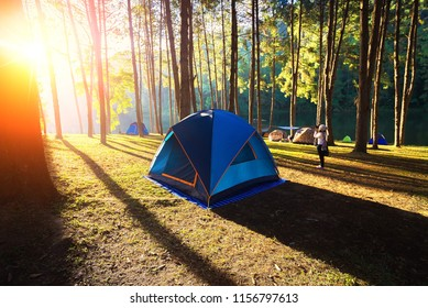 Tourist tent in camp among meadow in the mountain. Concept Travel