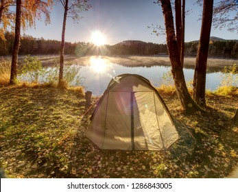Tourist tent. Camping bellow trees at the river bank. Summer sunny morning at lake.