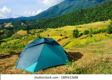 Tourist tent camping on the hill beneath the mountains under dramatic sky and golden terrace fields view in Chiangmai , northern of Thailand.