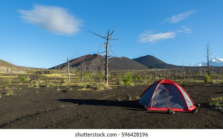 Tourist tent in Dead wood - a consequence of a catastrophic release of ash during the eruption of the volcano in 1975 Tolbachik