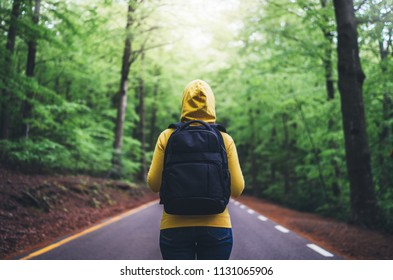 tourist traveler with backpack standing into road at summer green forest, view back girl hiker in yellow hoody looking and enjoying the breath of fresh clean air in trip, relax holiday concept