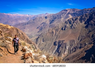 Tourist walking alone on the narrow path along the cliff of the mountain in Canyon Colca, Peru, South America