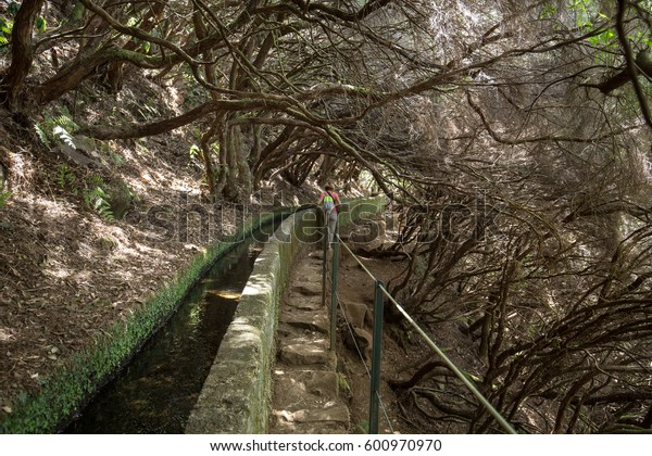 Tourist is walking along levada canal. Madeira island, Portugal