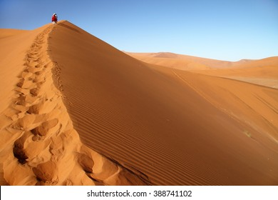 Tourist walking up a dune in Sossusvlei, Namib Naukluft National Park, Namib desert, Namibia.