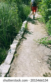Tourist walking in nature. Summer landscapes along green park in traveling journey. Walkway in hiking.