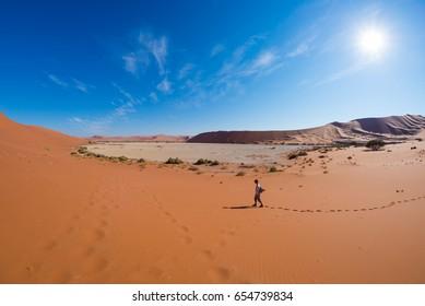 Tourist walking on the scenic dunes of Sossusvlei, Namib desert, Namib Naukluft National Park, Namibia. Adventure and exploration in Africa.