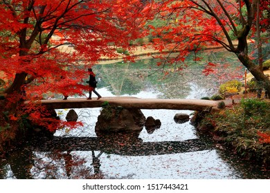 A tourist walking on a stone bridge over a pond under fiery maple foliage in the autumn forest of beautiful Rikugi-en Park, a traditional Japanese garden famous for vibrant fall colors in Tokyo, Japan