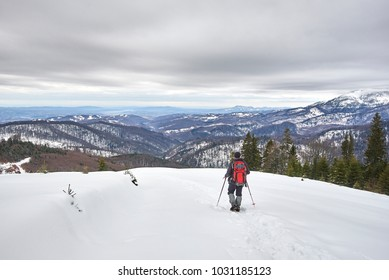 A tourist walking through the snow on the top of a hill in the middle of the forest.