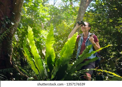 Tourist watching through binoculars birds in the tropical forest. Bird watching tours. Ecotourism concept image travel.