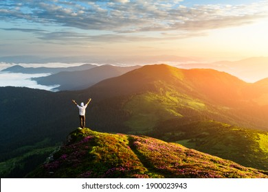 A tourist in white shirt on the edge of a cliff covered with a pink carpet of rhododendron flowers in the summer. Foggy mountains on the background. Landscape photography