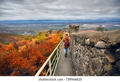 Tourist woman in brown hat and backpack walking on the ancient city wall with view to Alazani valley at autumn time in Signagi, Georgia