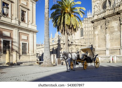 Touristic horse carriage in the streets of Seville,Spain