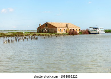 touristic passenger vessel moored at historical fishing station building in the lagoon with seagull in flight, shot in bright spring sun light at Comacchio, Ferrara,  Italy