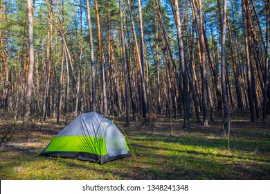 touristic tent stay in a forest