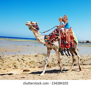 Tourists children riding camel  on the beach of  Egypt.