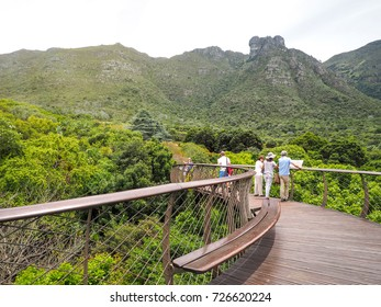 Tourists group reading history of Tree Canopy Walkway in Kirstenbosch National Botanical Garden is acclaimed as one of the great botanic gardens of the world, Cape Town, South Africa, 22 Nov 2016