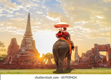 Tourists lover on an ride elephant tour of the ancient city sunset ,ayutthaya, thailand