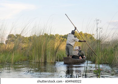 Tourists in a Mokoro, a wooden boat used in the Okavango Delta in Botswana with a park ranger peddling during sunset as part of a water safari