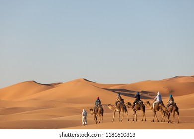tourists on camels in large dunes, Merzouga Marocco