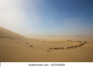 Tourists ride Camel over Sunshine Summer Desert over blue sky, Travelers riding Camels as Caravan group tour on route Sand road in Sand Storm at MingShaShan, DunHuang, China