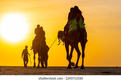 Tourists riding on camel back in Greater Rann of Kutch, Gujarat, India