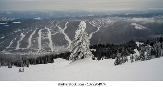 Tourists skiing in Thompson-Nicola Regional District, Sun Peaks, British Columbia, Canada
