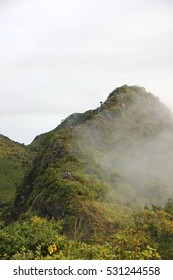 tourists travelers nature trail