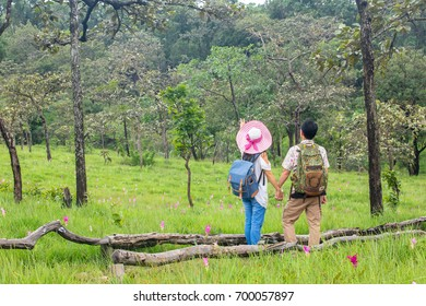 Tourists at the Tulip Thailand field national park.