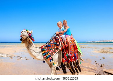 Tourists two sisters children riding camel  on beach of  Egypt on blue sky background.