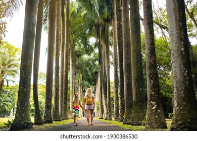 Tourists walk along the avenue with large palm trees in the Pamplemousse Botanical Garden on the island of Mauritius.