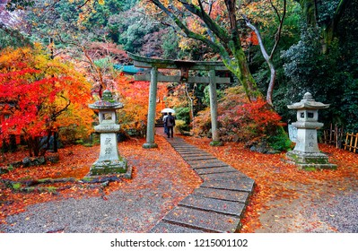Tourists walk under a Torii gate with traditional stone lanterns, colorful trees & fallen leaves by the paved footpath at the entrance to Benzaiten Shrine in Bishamon-do Buddhist Temple in Kyoto Japan