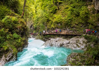 Tourists walking in forest near a river, Vintgar gorge, Slovenia