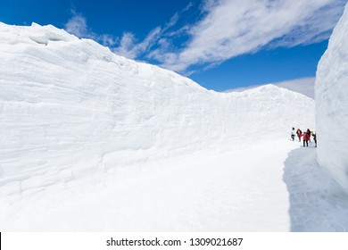 Tourists walking through a beautiful nature of high snow wall corridor in Tateyama Kurobe Alpine Route which known as Japan alps, under white cloud in bright blue sky and sunlight