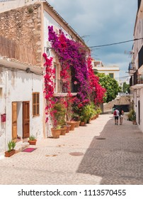 Tourists walking through the white and ancient streets, typical of the city of Ibiza. Decoration with flowers of the white houses of the old area