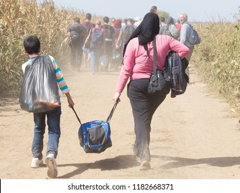 TOVARNIK, CROATIA - SEPTEMBER 19, 2015: Refugees walking through the fields near the Croatia Serbia border, between the cities of Sid Tovarnik on the Balkans Route, during the Refugee Crisis