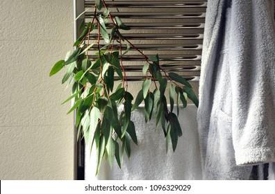 Towel and bathrobe with eucalyptus leaves on the bathroom heater, modern and cozy spa