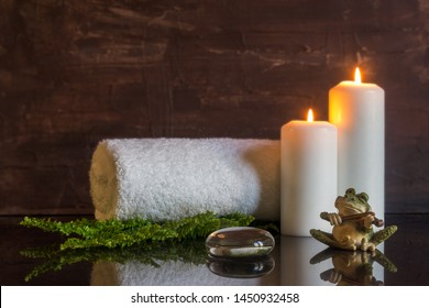 towel on fern with candles on shiny surface with a frog playing the violin with rustic background, zen, calming and relax concept,