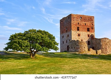 The tower of the ancient danish castle ruin on Bornholm, situated next to an old beautiful oak tree