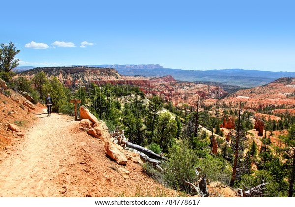 Tower Bridge Trail Bryce Canyon National Parks Outdoor Stock Image 784778617