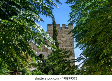 Tower of a Crusaders castle in jubail (Byblos) Lebanon seen through the vegetation