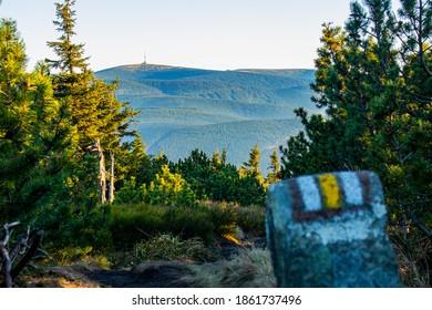 Tower on the top of Praded, View from yellow hiking trail, Vresova Studanka, Hruby Jesenik - Shutterstock ID 1861737496