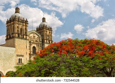 the towers of Santo Domingo Guzman cathedral with a flowering tree in the foreground