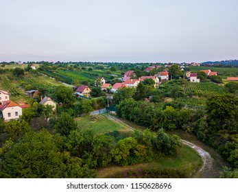 Town above the trees with dramatic sky with the green color.