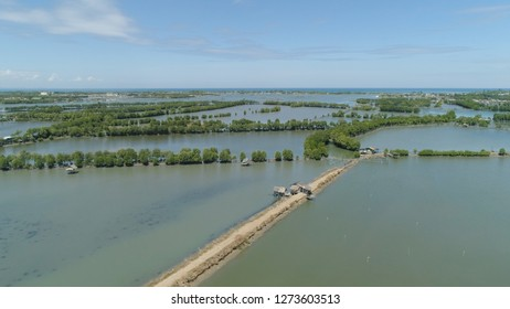 Town in cultivated mangroves, Ubagan, sto tomas. Fish farm with cages for fish and shrimp in the Philippines, Luzon. Aerial view of fish ponds for bangus, milkfish. Fish cage for tilapia, milkfish