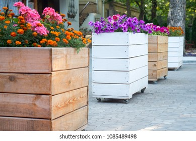 Town flowers in the big wooden pots on street. Interior street cafe with flowers in wooden pot