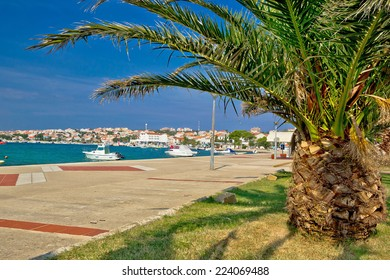 Town of Novalja palm waterfront view, island of Pag in Dalmatia, Croatia